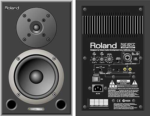 roland ds 50 a roland ds 50 a monitor active digital and analog rh dancetech com Dnd 3.5 Character Sheet Dungeon Master's Guide
